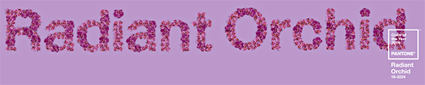 2014 color of the year – radiant orchid